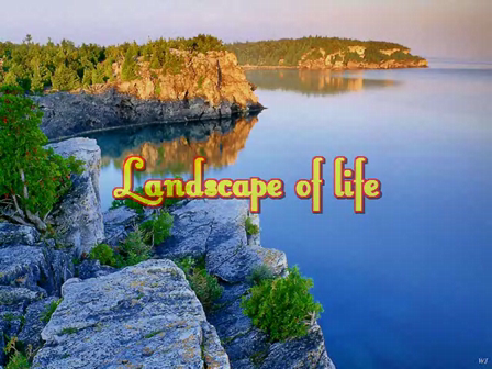 The Landscape of Life.