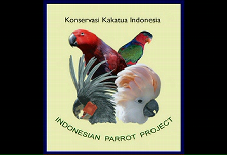 Wild Parrots & Cockatoos of Indonesia