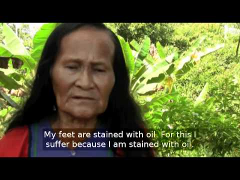 18 Years of Fighting Chevron