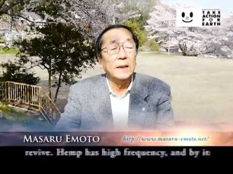 Dr Masaru Emoto talks about Industrial Hemp as a solution to Fukushima