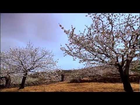 Vive la Belleza de Extremadura