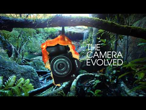See The Camera Evolved. Introducing the Sony Alpha