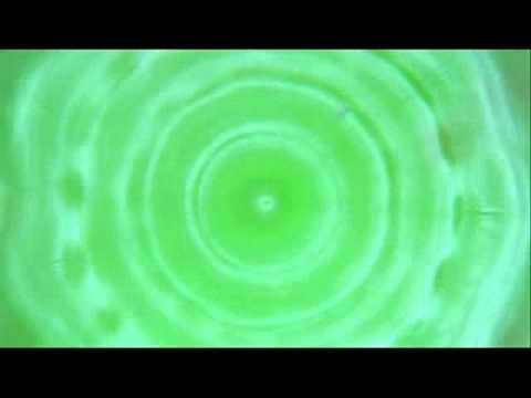 Cellular Regeneration (Cymatics).wmv