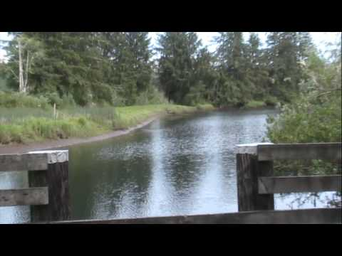 Florence Oregon Wilderness and Nature