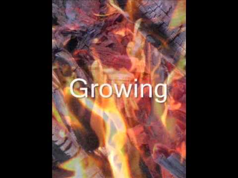Original Hypnotic Music journey - EXPANDING CACTUS - by AUSTEN BRAUKER