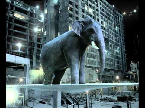 Funny Elephant Jump Zuari_Cement