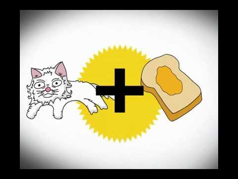 feline butterology