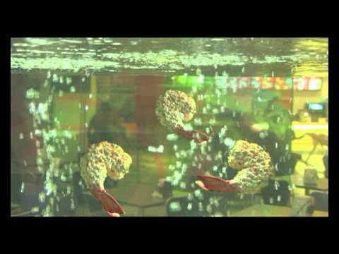 LG seafood aquarium full version.mpg