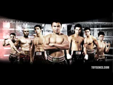 Toysence Elite Boxing Spot