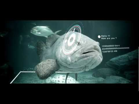 fish messege [final] - composite after effect