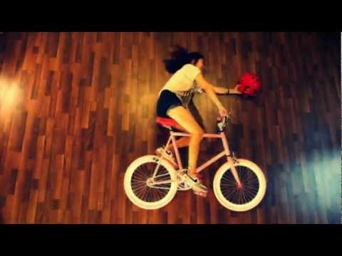 WD mini fixed gear commercial
