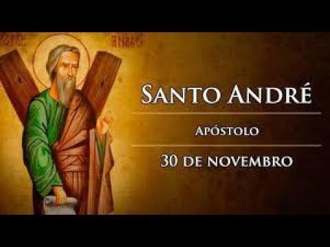 30 de Novembro - dia de Santo André Apóstolo