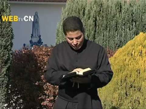 Apresentação de Nossa Senhora no Templo   cancaonova com   Santo do Dia!