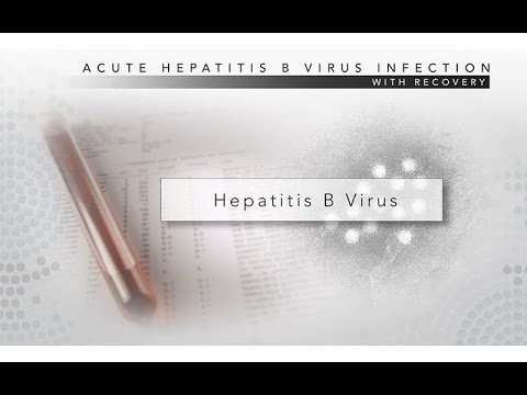 Hepatitis B: CDC Viral Hepatitis Serology Training