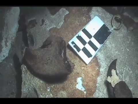 Hallazgo de evidencia fosil de mega-fauna extinta de la era del hielo dentro de una cueva inundada