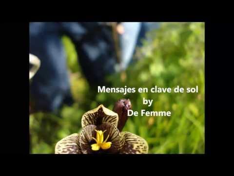 Mensajes en clave de sol  De Femme
