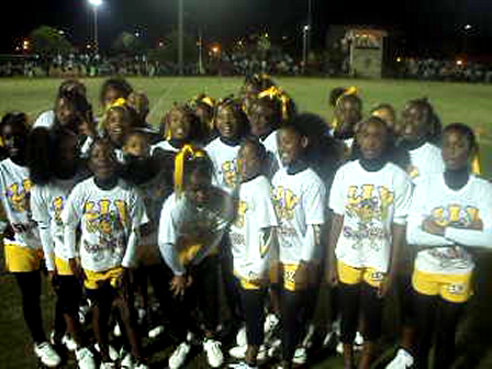 Lauderdale Vikings 120's Cheer