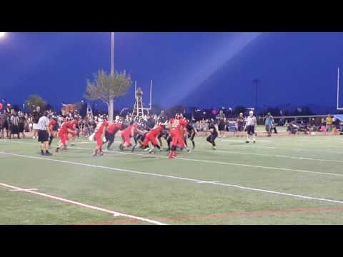 Demar Ramsey class of 2020 RB/LB Spring highlights