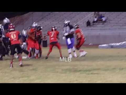 Demar Ramsey class of 2020 RB/LB 2016 NYFL CHAMPIONSHIP Game Highlights