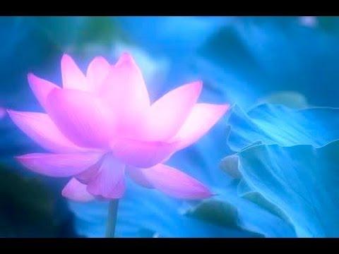 Meditación con la Diosa de la Paz , recibe su regalo de paz en tu corazón