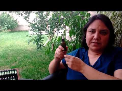 Fibromialgia y Flores de Bach -  Manejo del Dolor (1 - 40)