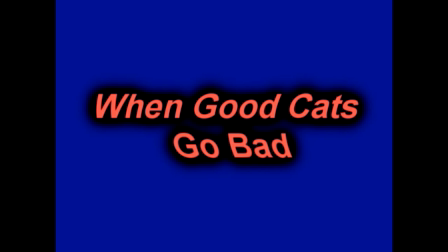 When Good Cats Go Bad