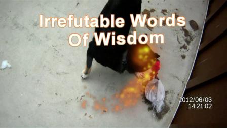 Video Bowling-Irrefutable Words Of Wisdom