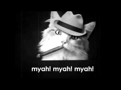 Meow Mix Commercial from the 1920s