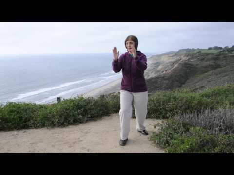 Tai Chi-Qigong for Walking, Balance & Strength: Walking the Energy Ball
