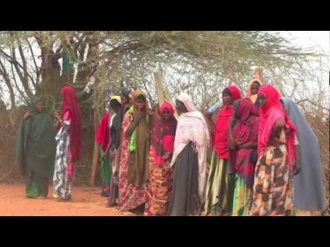HISG:  IDRN Africa Response Update
