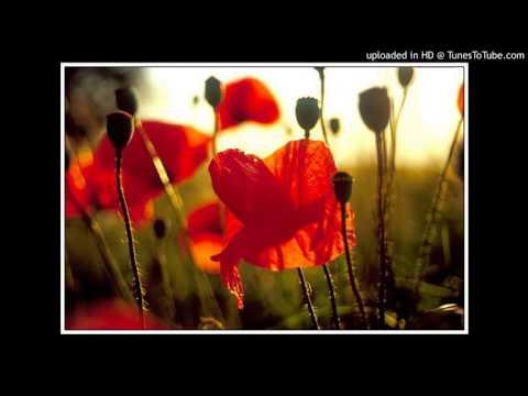 Lelia Mossora -  Somn de mac - recită Gheorghe Turiac