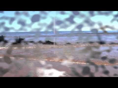 Octavio Paz - Carta De Creencia