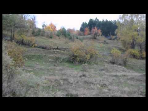 Vasilisia Lazăr Grădinariu - Toamnă Fără Ciocârlii