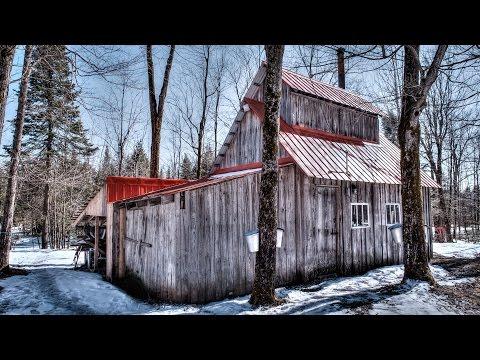 Stop motion - Sugar cabin
