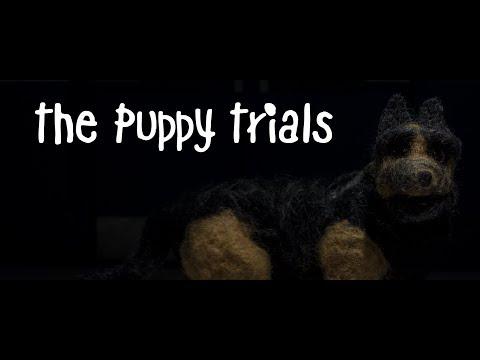 The Puppy Trials