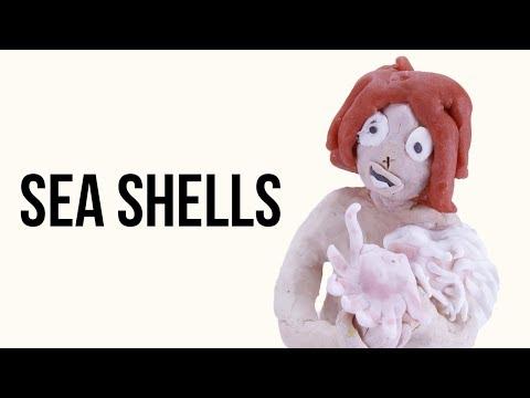 "Sea shell ""collection"" | Animation"