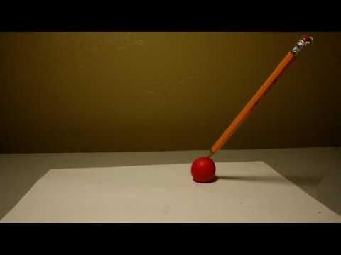 Stop Motion Compilation