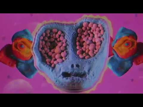 GUM - The Blue Marble (Official Music Video) By Alex McLaren and Sean McAnulty