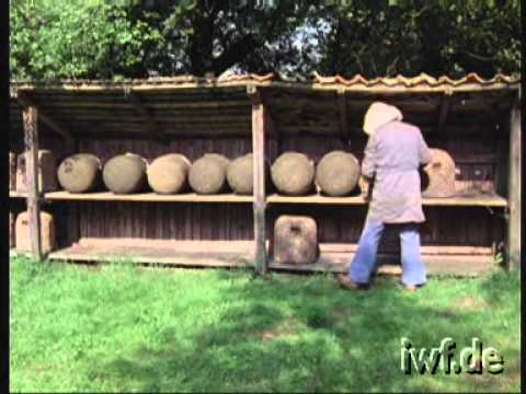Heathland Beekeeping - 4  - Work in a Heather Skep Apiary during the Cast Swarming Period