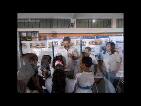 Vídeo de Apresentação de Resultados: Educação Patrimonial - Porto Maravilha