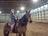 The Pocono Equestrian Center