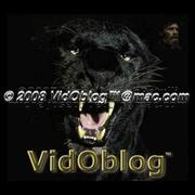 VidOblog™