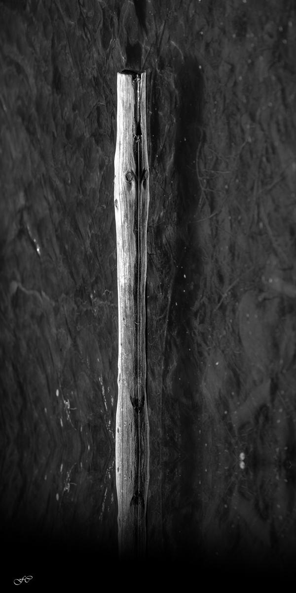Il bastone della vecchiaia