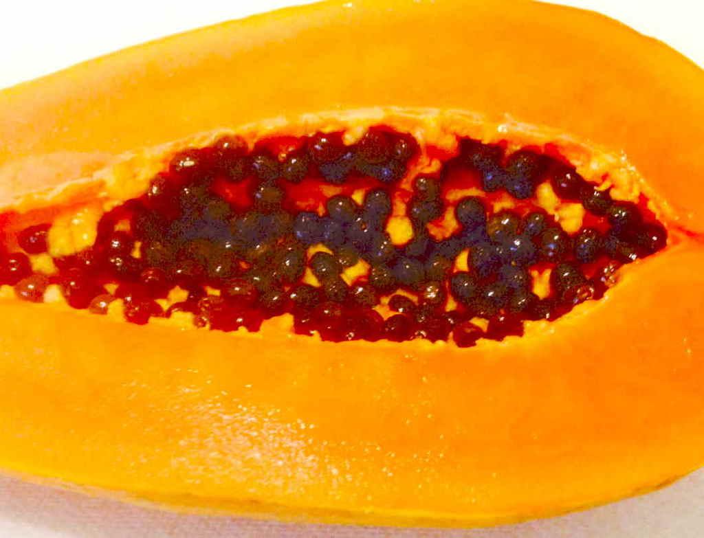 "10 Amazing Health Benefits of Eating Papaya Seeds"" – OMTimes"