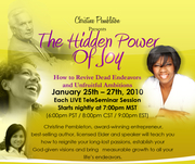 The Hidden Power of Joy TeleSeminar Preview Call