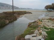 Υγρότοποι της Πάρου, τα στολίδια του νησιού. Διήμερο Εκδηλώσεων / Paros Wetlands, the jewels of the island! Events for their protection