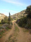 Πεζοπορία: Λεύκες-Δριός / Hiking: Lefkes to Drios