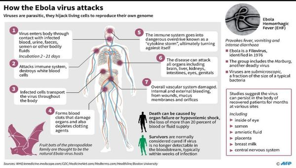 ebola_virus_attacks