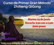 Primer Gran Método Zhineng Qi Gong