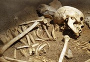 Brown Bag Lunch & Learn-Forensic Anthropology: How the Dead Died
